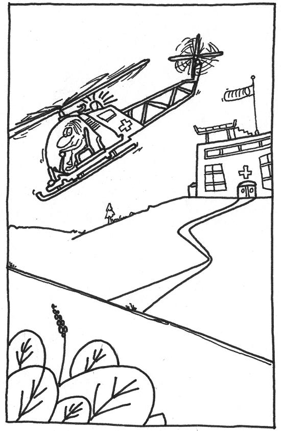 Claus Maywald Hubschrauber